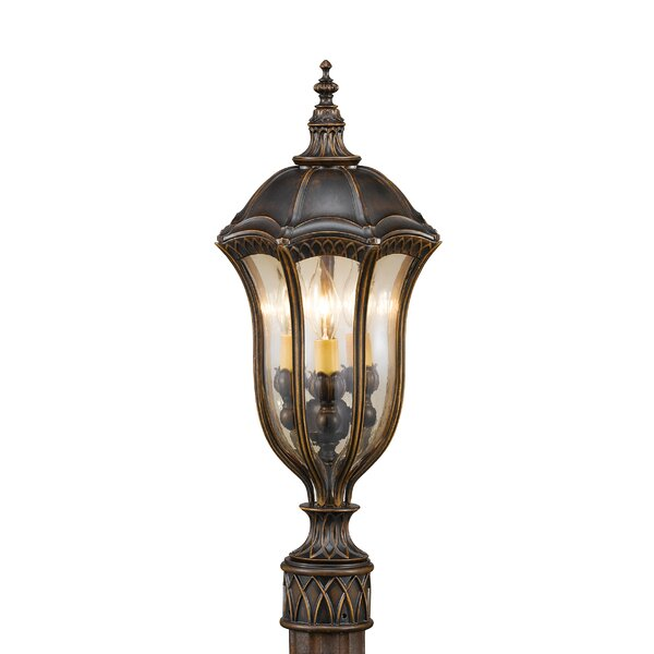 ChesterhillOutdoor 3-Light Lantern Head by Darby Home Co