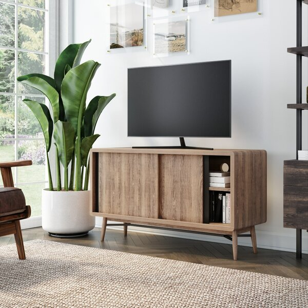Summerdale TV Stand For TVs Up To 49