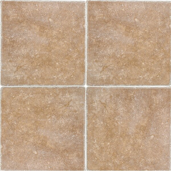 Tumbled 12 x 12 Travertine Field Tile in Noce by Parvatile