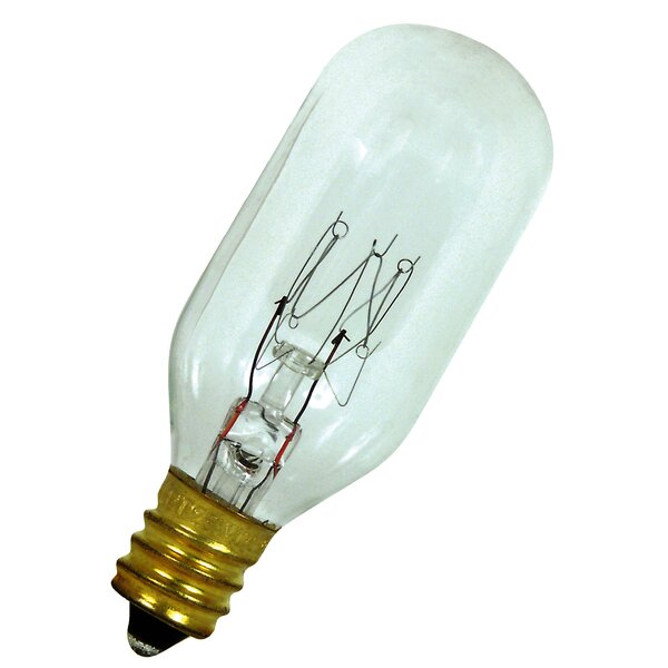 25W 120-Volt Incandescent Light Bulb by FeitElectric