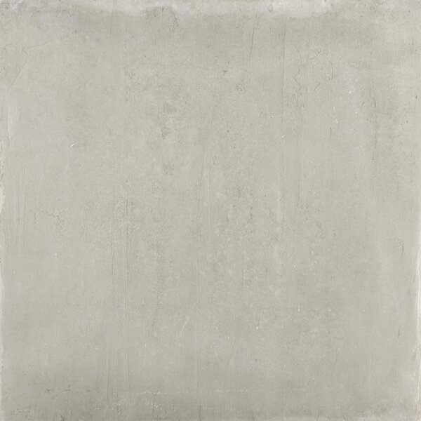 Alive 24 x 24 Porcelain Field Tile in Dust by Madrid Ceramics