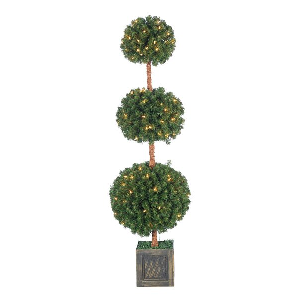 Potted Triple Ball Tree Boxwood Floor Topiary in Pot by The Holiday Aisle