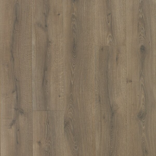 Colossia 10 x 80 x 10mm Oak Laminate Flooring in Pelzer by Quick-Step