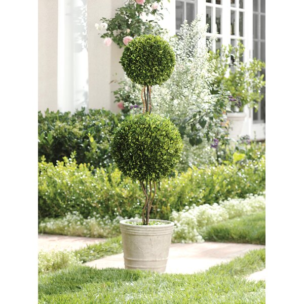 51-inch Tall Double Ball Preserved Floor Boxwood Topiary in Pot by Zodax