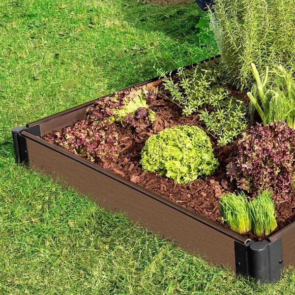 Gainsborough Uptown 4 ft x 8 ft Raised Garden by Ebern Designs
