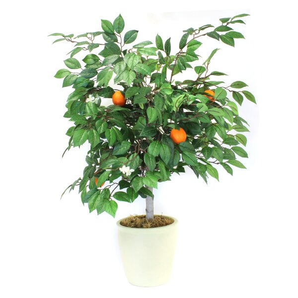 Mini Faux Orange Tree in Pot by August Grove