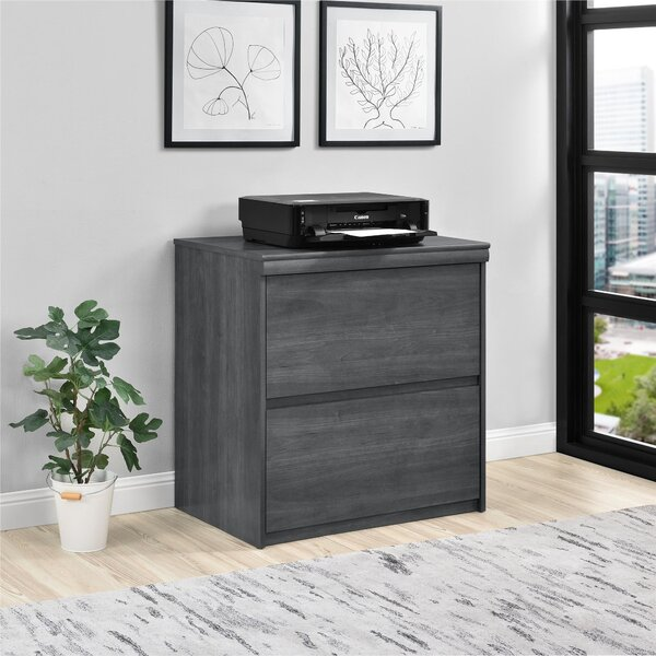 Elkin 2-Drawer File Cabinet by Wrought Studio