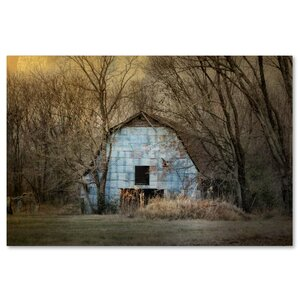 'Redtail at the Blue Barn' Photographic Print on Wrapped Canvas by Trademark Fine Art