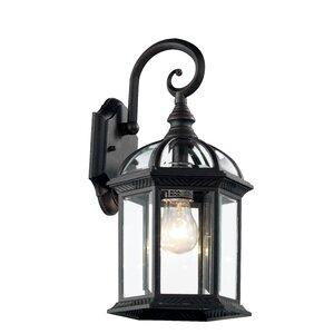 Blue Hills 1-Light Outdoor Wall Lantern