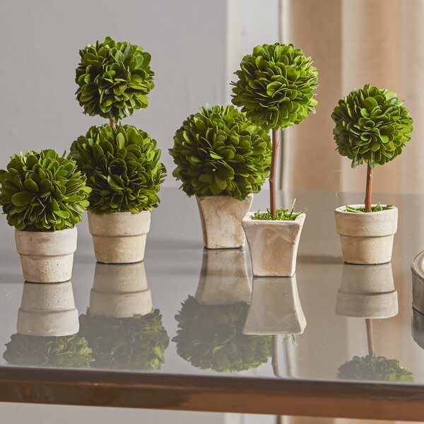 Gaudreau Mini 5 Piece Topiary Set by One Allium Way