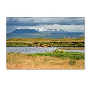 Wild Horses by Philippe Sainte-Laudy Photographic Print on Wrapped Canvas by Trademark Fine Art