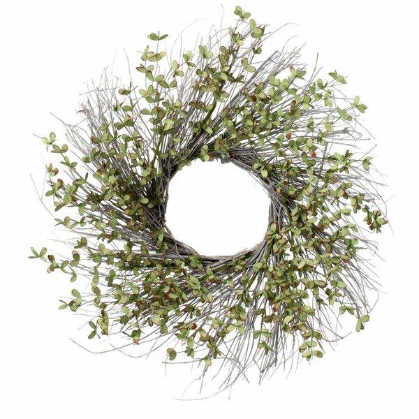 Mystic Eucalyptus Twig 24 Wreath by Gracie Oaks