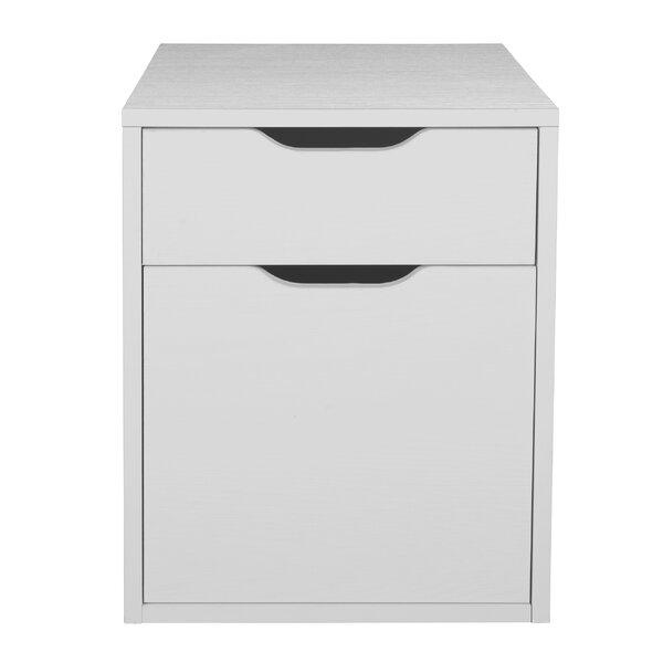 Freestanding 2-Drawer Vertical Filing Cabinet by Rebrilliant