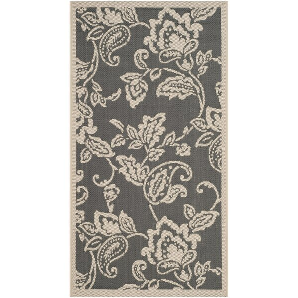 Highland Lily Anthracite/Beige Area Rug by Safavieh