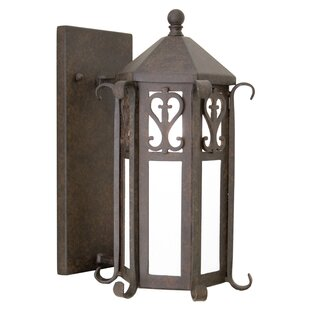 Caprice 1-Light Outdoor Wall Lantern By 2nd Ave Design Outdoor Lighting
