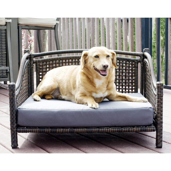 Fay Maharaja Rattan Dog Sofa by Tucker Murphy Pet