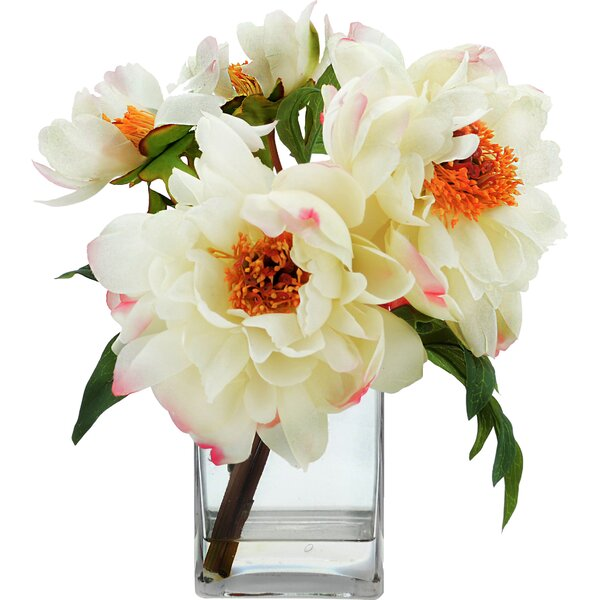 Tipped Peony Floral Arrangement by Beachcrest Home