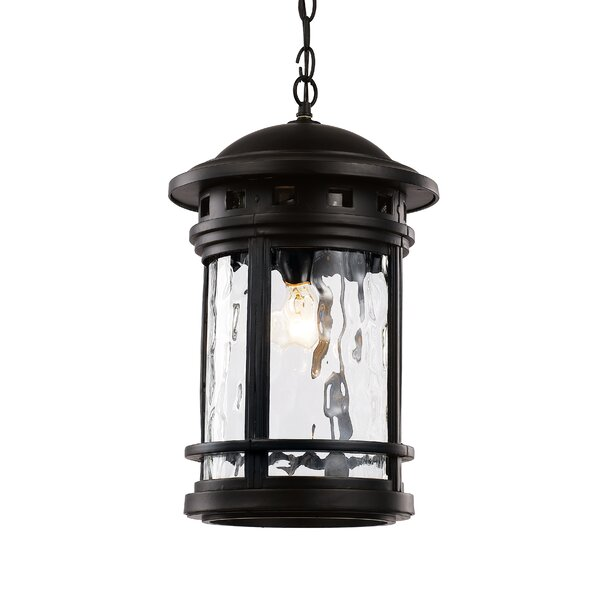 Ashberry 1-Light Outdoor Hanging Lantern by Loon Peak