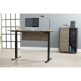 Francella Standing Desk with Bookcase