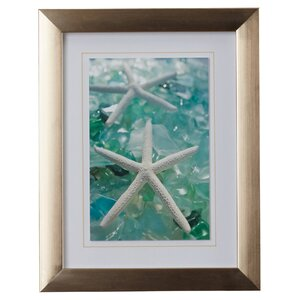 'Sea Glass Shells III' Framed Photographic Print by Highland Dunes