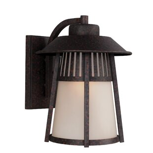 Affordable Burkettsville 1-Light Outdoor Wall Lantern By Darby Home Co