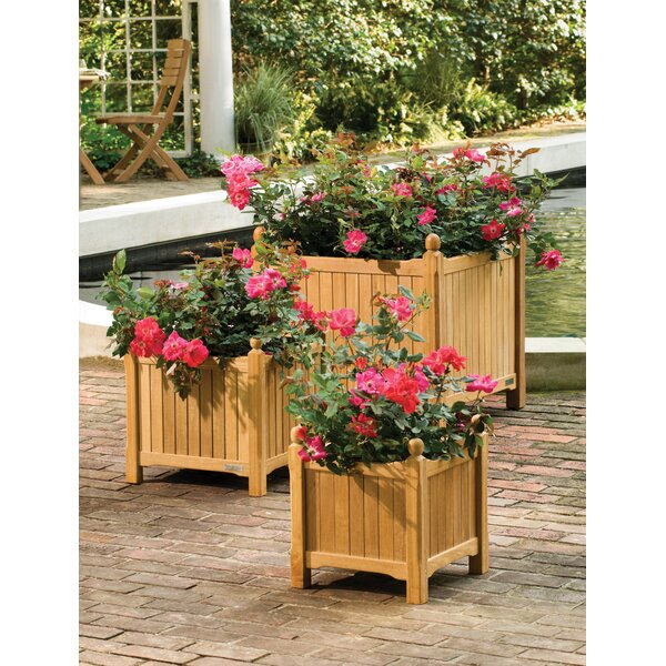 Duneane 3 Piece Wooden Planter Box Set by Canora Grey