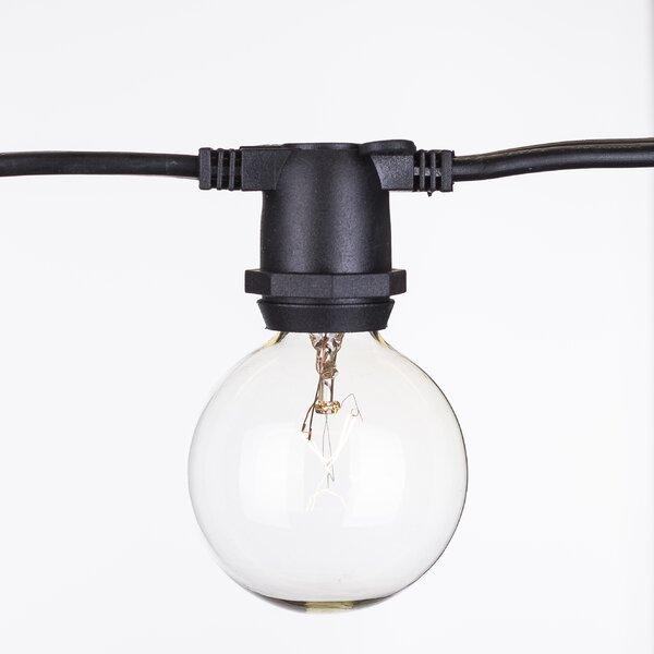 65-Light Globe String Lights by Aspen Brands