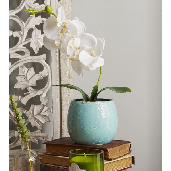 Phalaenopsis Orchid in a Distressed Pot with Faux Dirt by Highland Dunes