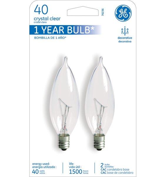 40W 120-Volt (2500K) Incandescent Light Bulb by GE
