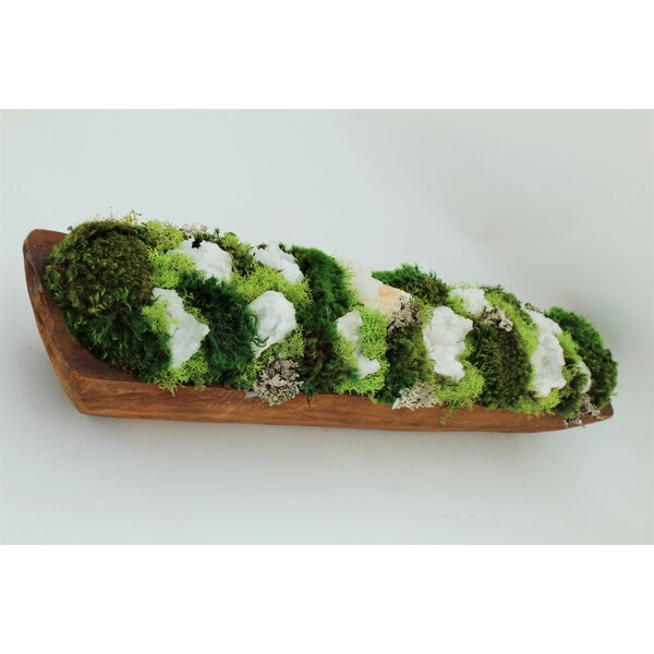 Organic Moss and Quartz Crystal Geode Floral Arrangements in Planter by T&C Floral Company