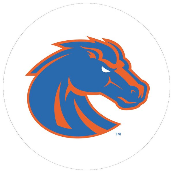 Boise State University Collegiate Coaster (Set of 4) by Thirstystone