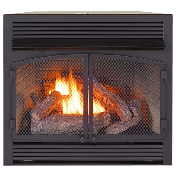 Heating Vent Free Propane/Natural Gas Fireplace Insert By ProCom