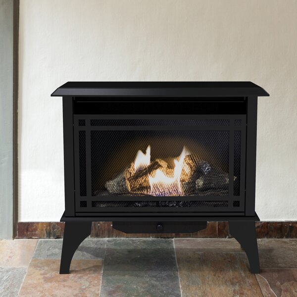 1,000 sq. ft. Vent Free Gas Stove by Pleasant Hearth