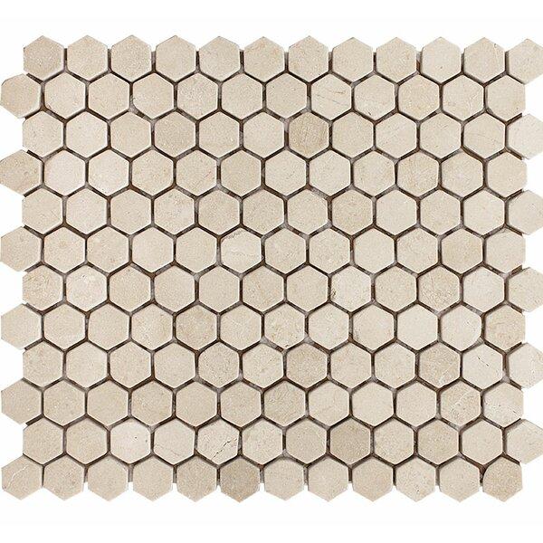 Crema Marfil Tumbled Hexagon 1 x 1 Stone Mosaic Tile by Parvatile