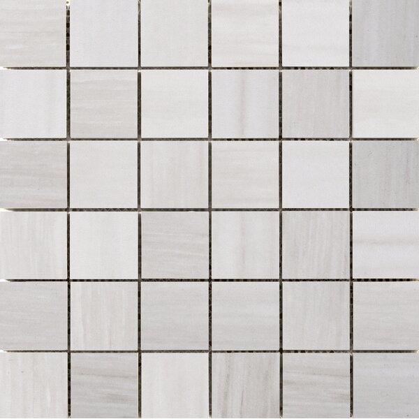Latitude 2 x 2 Porcelain Mosaic Tile in Ivory by Emser Tile