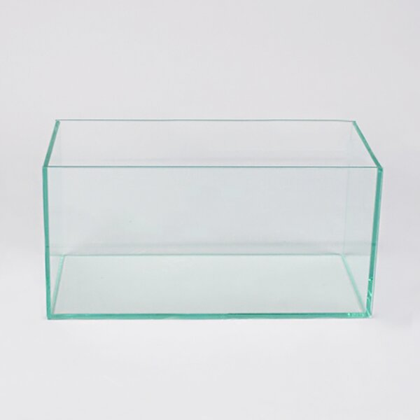 Rectangular Foot Long Glass Planter Box by Vasesource