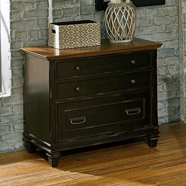 Django 2 Drawer Lateral Filing Cabinet by 17 Stories