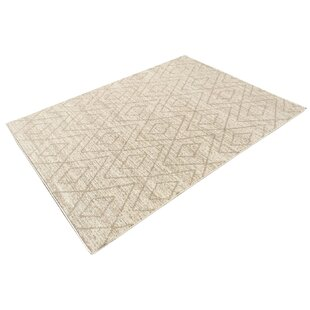 Torgerson Cream/Beige Outdoor Area Rug By Union Rustic