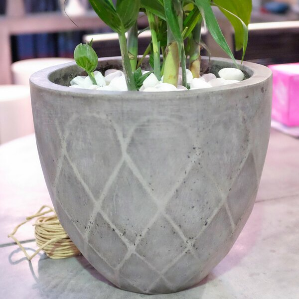 Bodega Composite Pot Planter by My Spirit Garden