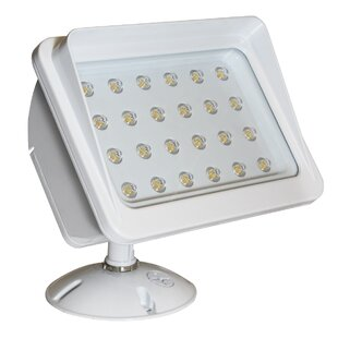 Bargain Panorama 30-Light LED Flood Light By American Lighting LLC