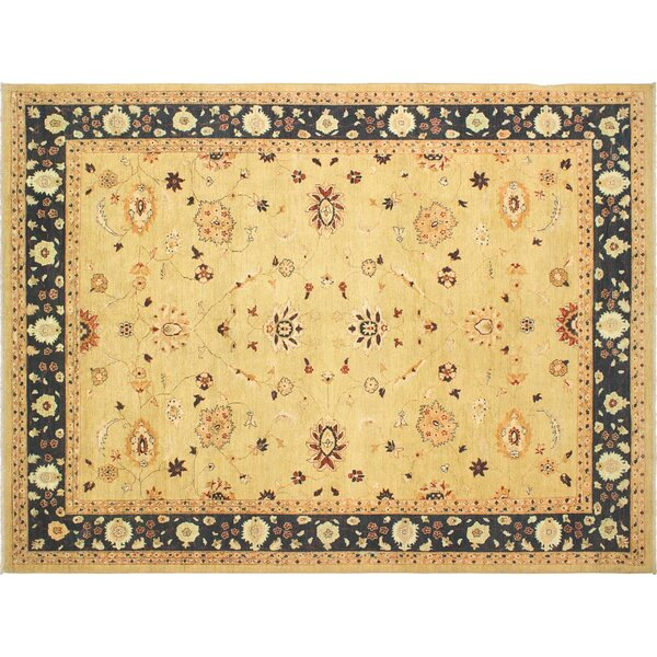 Xenos Transitional Hand-Knotted Wool Gold/Blue Area Rug by Astoria Grand