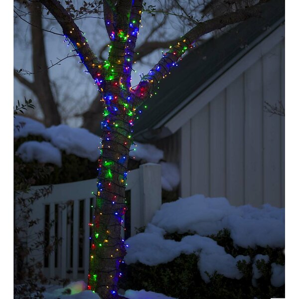 Multifunction Twinkle LEDs on Wire Battery Operated 368 Light String Lights by Plow & Hearth