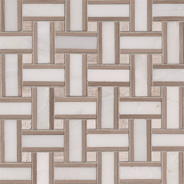 Renaissance 12 x 12 Marble Mosaic Tile in White by MSI