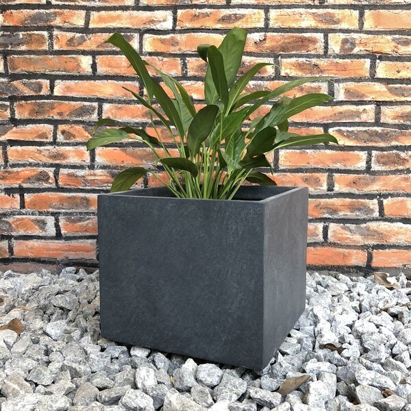 Fuentes Smooth Square Planter Box by Williston Forge