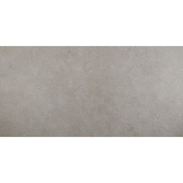 Haut Monde 24 x 48 Porcelain Field Tile in Glitterati Granite by Daltile