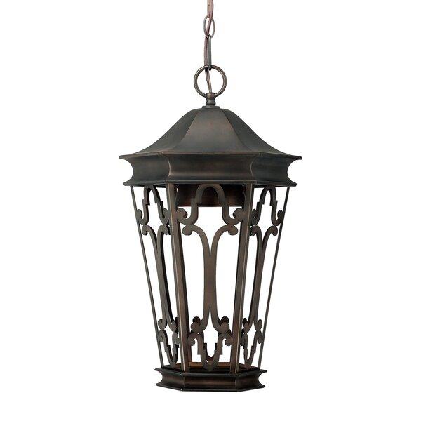 Dark Sky 1-Light Outdoor Hanging Lantern by Capital Lighting