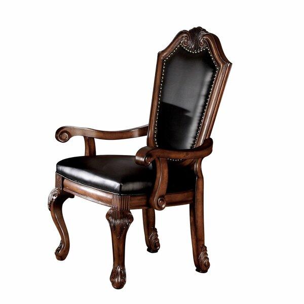 Damarion Armchair (Set Of 2) By Astoria Grand