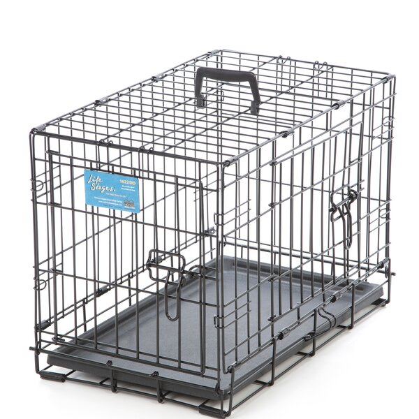 Life Stages Fold & Carry Double Door Pet Crate by Midwest Homes For Pets
