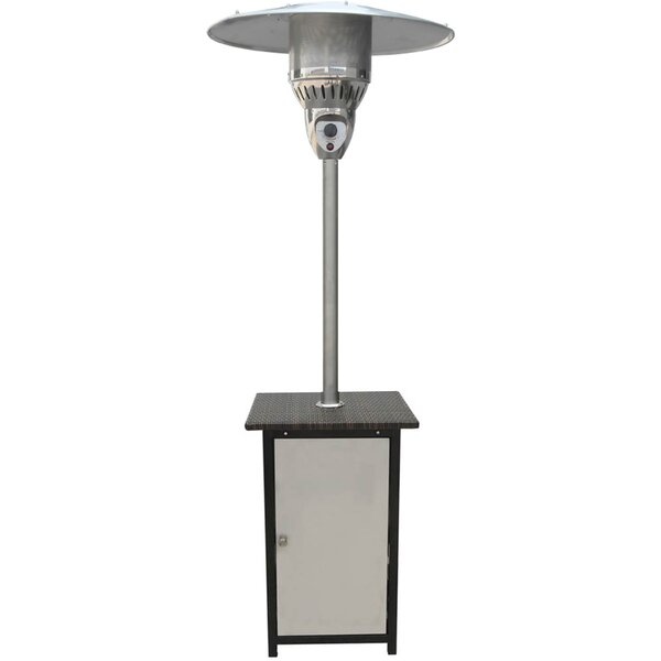 41,000 BTU Propane Patio Heater by Cambridge