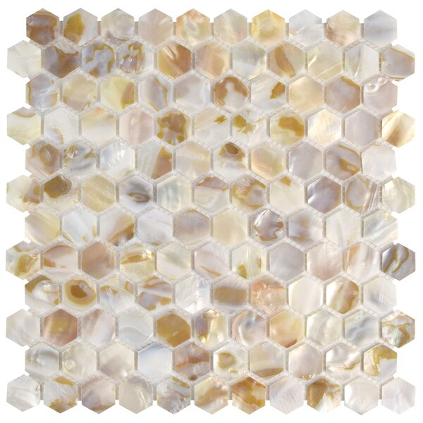 Shore 0.96 x 0.96 Seashell Mosaic Tile in Natural shell by EliteTile